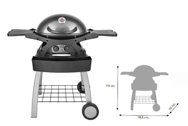 barbecue_a_gas_twingrill